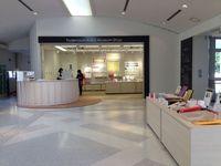 ファサード-2 円形の受付カウンターからミュージアムショップを見るの画像